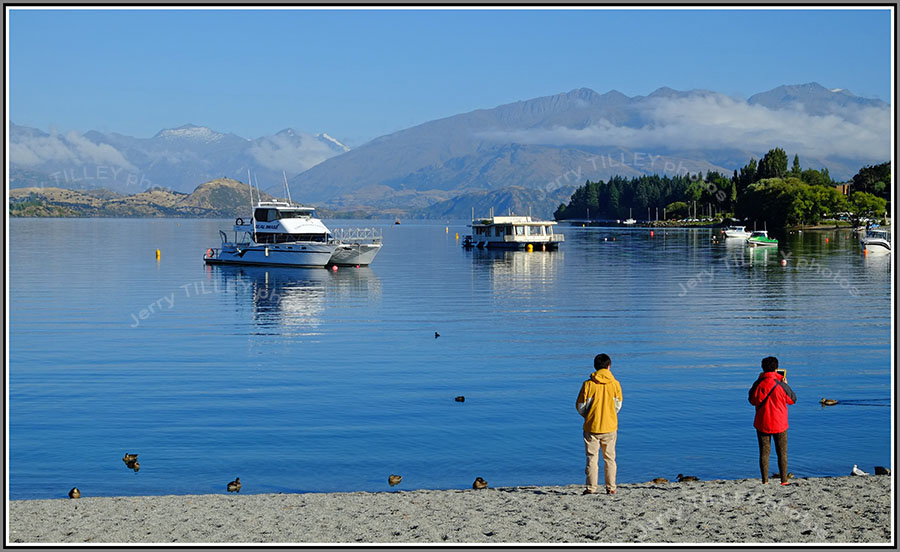 Wordpress-Wanaka